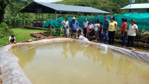 Implementan proyecto de acuicultura en Cañazas.